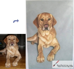 Custom Pet Portrait-Big yellow dog