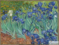 Irises, 1889, Getty Center, Los Angeles