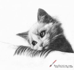 Custom Drawing-Cat lying