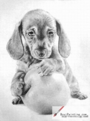 Custom Drawing-The dog playing the ball