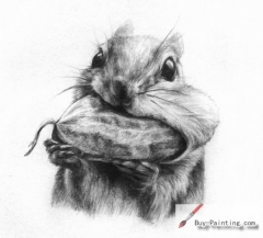 Custom Pencil Drawing-Pet rat eating